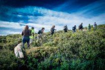 Caminhada Green Trekker Vimeiro